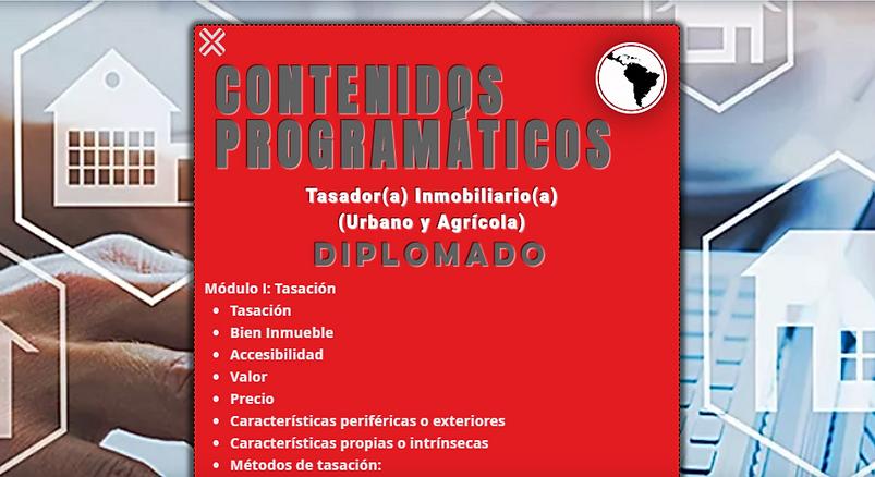 CONTENIDOS TASADOR.png