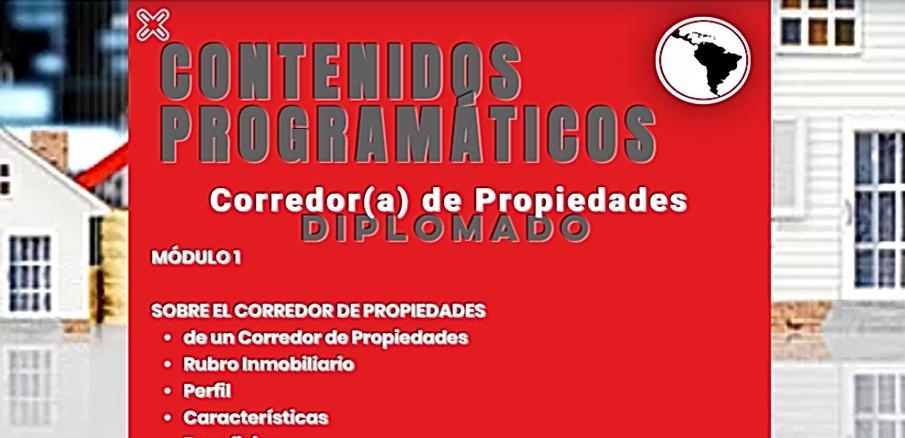 CONTENIDOS INSPECTOR.png