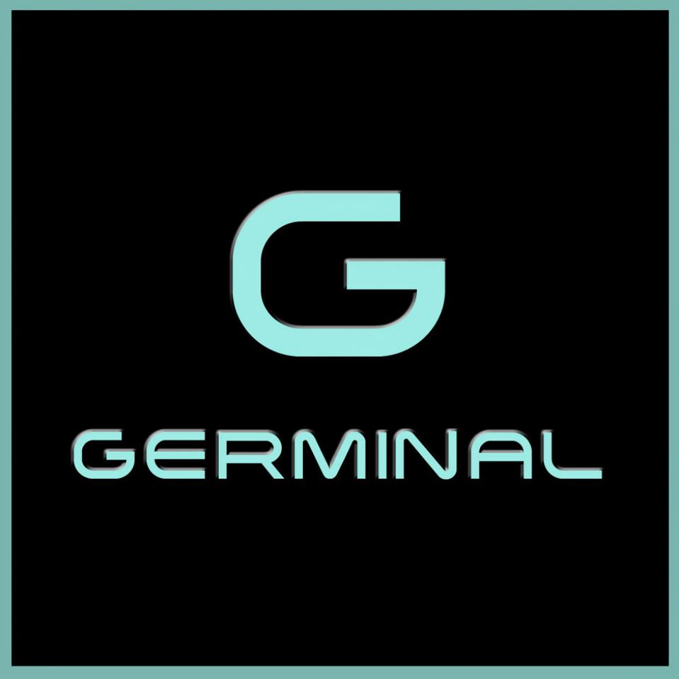 gemrinallogo3_0BLACK.png
