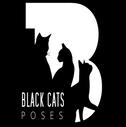 regular - black cats poses.png