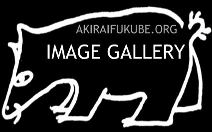 image_gallery_header.jpg