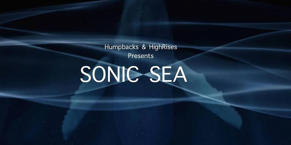 SONIC SEA FILM NIGHT | PRESENTED BY HUMPBACK + HIGHRISES