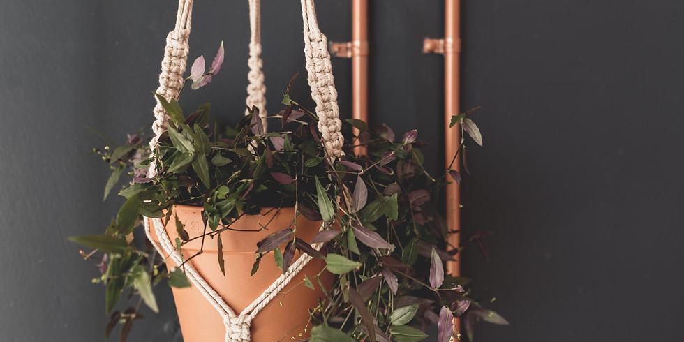 Macrame Plant Hanger at Soul Harvest