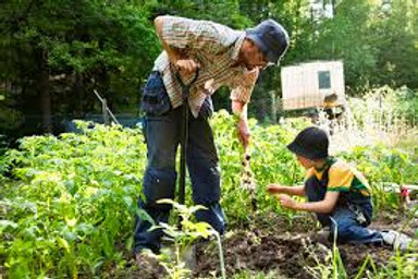 Cultivating your garden