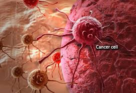Facts About Cancer