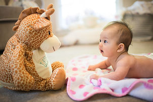 Baby Looking at Stuffed Animal Laying on