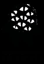 logo multimostro.png