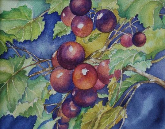 Fruit of the Spirit-Print