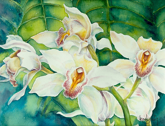 White Orchids-Print