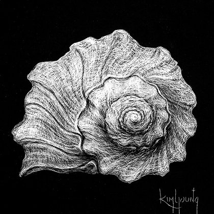 Spiral Shell-Print