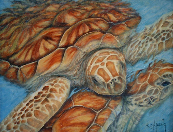 Sea Turtles-Print