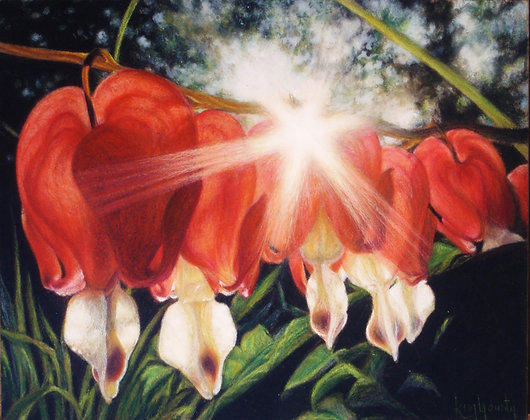 Sunlit Bleeding Hearts-Print