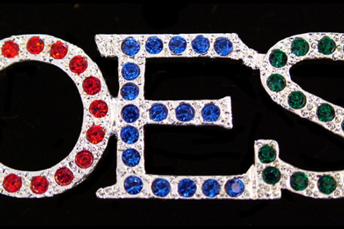 OES - Order of the Eastern Star lapel pin