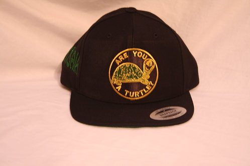 Are You A Turtle? YBYSAIA ball cap
