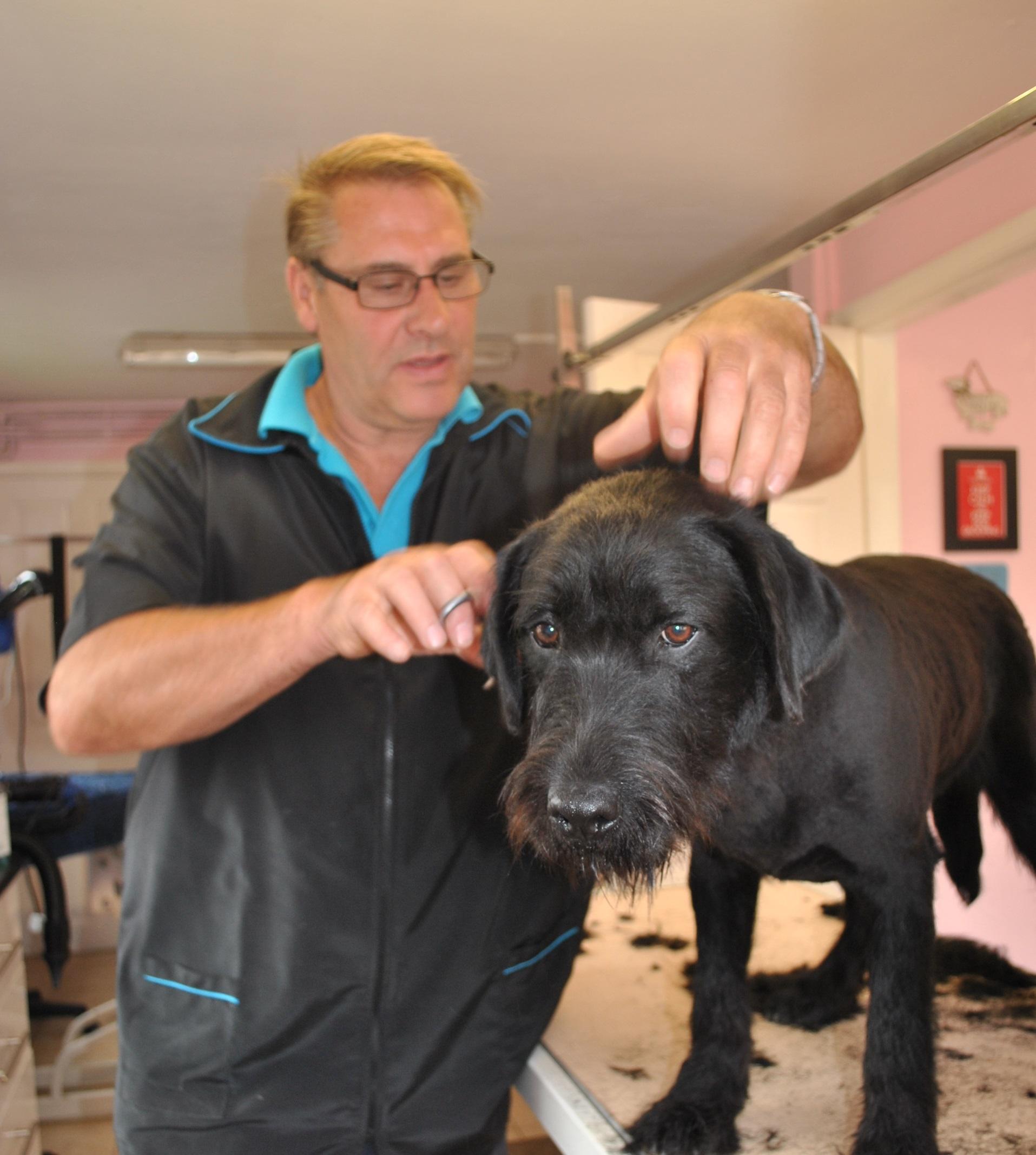 Mucky Pups Parlour