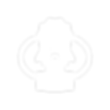 noun_standard_3030847 (1).png
