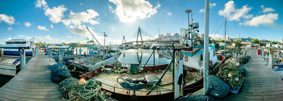 Fish Markets 30042021 Pano A0 2.jpg