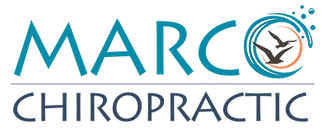 Marco Chiropractic Logo light blue.png