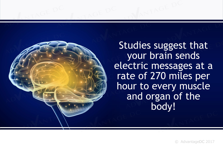Brain Waves Watermarks