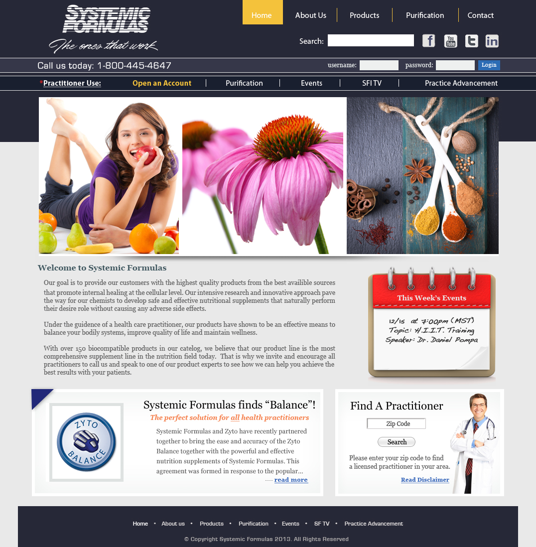 Website Systemic Web design alt home