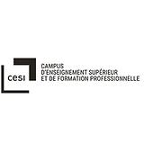 Logo_CESI - Copie.png