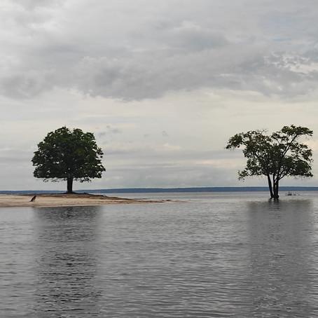Braço de rio, visão do Mundo***