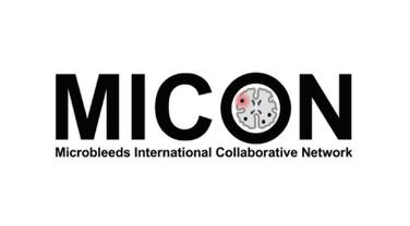 Microbleeds International Collaborative Network