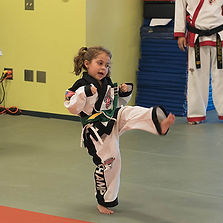 3_0003_toddler tkd.jpg