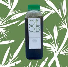 Chlorophyll Mint Tea