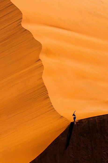 Oryx on Sand Dune