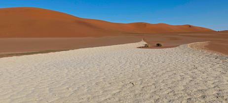 _Y5A1885 Dunes with dried mud flat web r