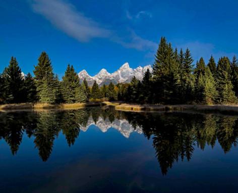 Schwabacher Landing Reflection - Tetons