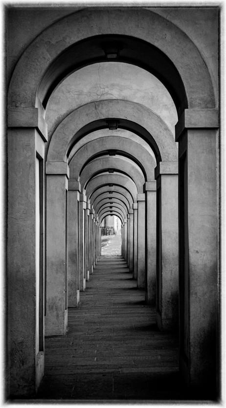 _Y5A8034 Arno arches web ready.jpg