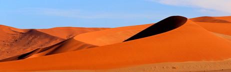 _T5A8388 Dunes.jpg