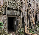 Ta Prohm Cambodia doorway with overgrowth.