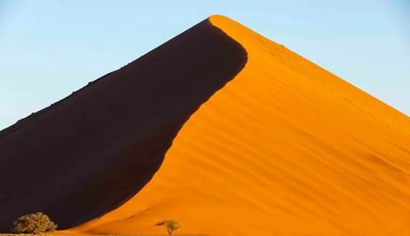 _Y5A1745 Dune 45 web ready.jpg