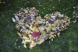 leaves-1025495_1920