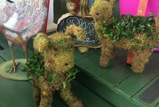 Garden Topiary Planters