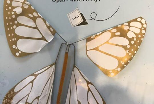 Topps Malibu Magic Butterfly
