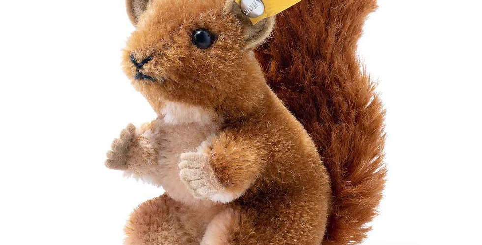 Brown Squirrel Wildlife Giftbox