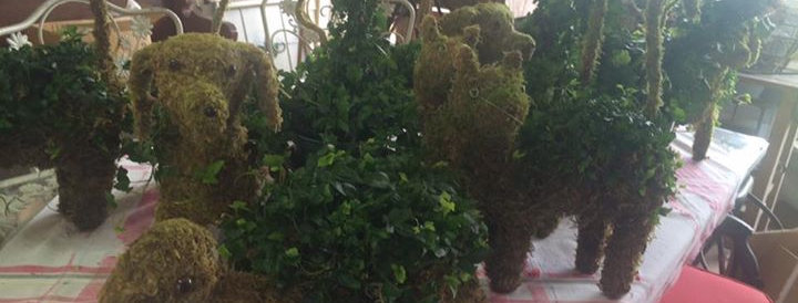 Garden Topiary Planters:  Turtle