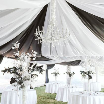 Drapery Design : Lauren Elens with Events Plus, Inc | Photograpy : Alexis Hyde Photography
