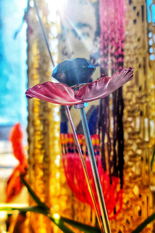 Ornamental Copper Poppy (set of 3)