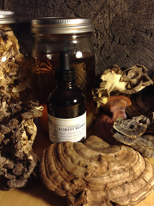 5 Mushroom Forest Blend - 2 oz.