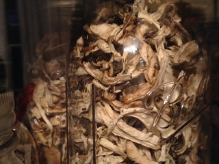 Hen of the Woods Bumper Harvest