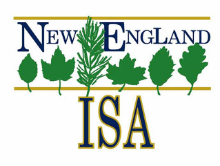 Thanks to New England Chapter ISA