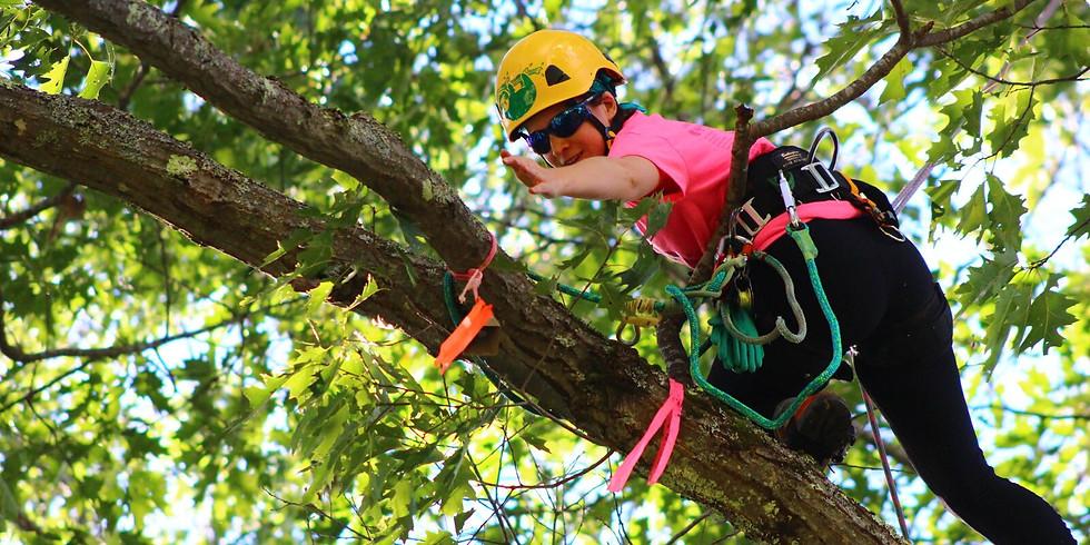 Women's Tree Climbing Workshop