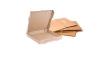 Cardboard and Pizza Box.png