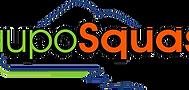 taupo squash logo