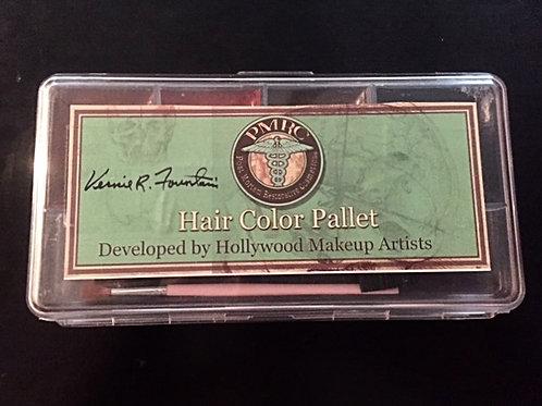 Color Hair Pallet